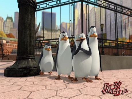 Пингвины из Мадагаскара: 1-15 Подавленный