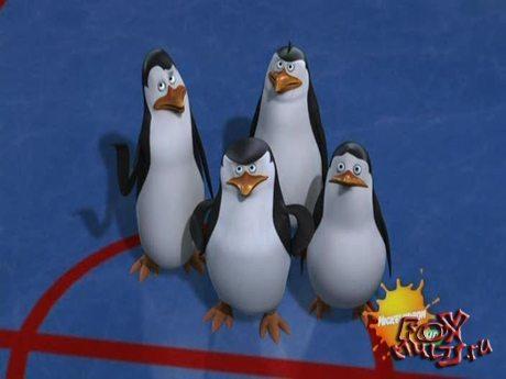 Пингвины из Мадагаскара: 1-18 Чудесный лед