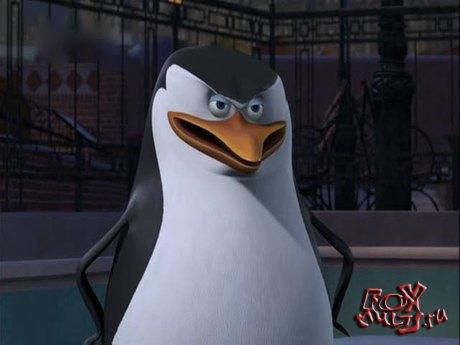 Пингвины из Мадагаскара: 1-25 Хитрый Роджер
