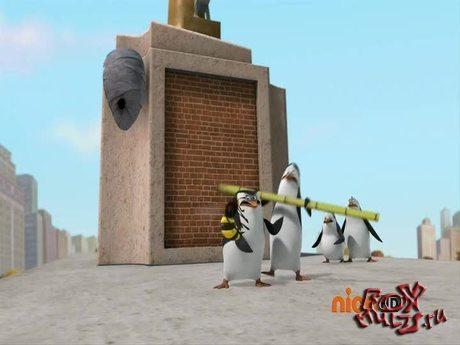 Пингвины из Мадагаскара: 1-36 Операция Жало