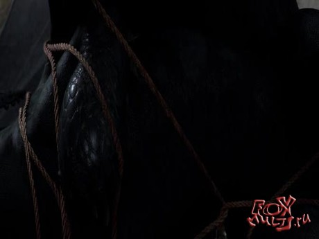 Мультфильмы: Как приручить Дракона